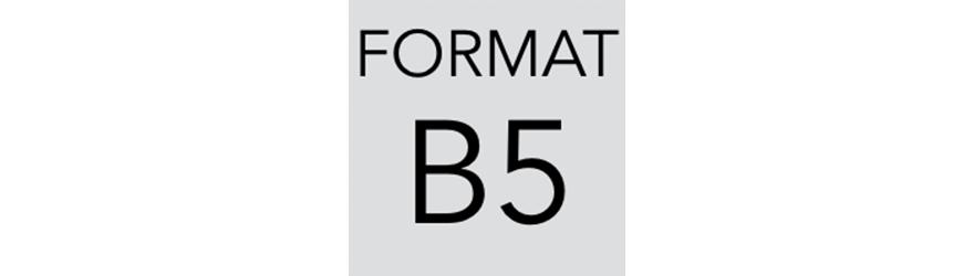Szafy kartotekowe na dokumenty w formacie B5. Szafy metalowe - polinskimeble.pl