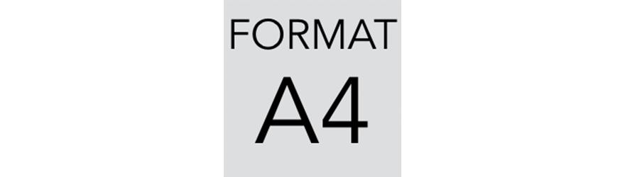 Szafy kartotekowe na dokumenty w formacie A4. Szafy metalowe - polinskimeble.pl
