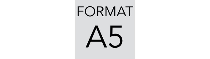 Szafy kartotekowe na dokumenty w formacie A5. Szafy metalowe - polinskimeble.pl