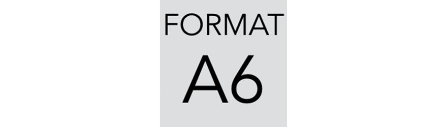 Szafy kartotekowe na dokumenty w formacie A6. Szafy metalowe - polinskimeble.pl